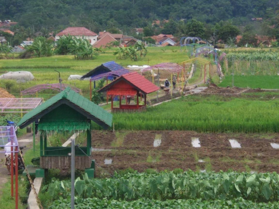 PEMBANGUNAN TAHUN 2018   Desa Jalaksana, Kecamatan ...